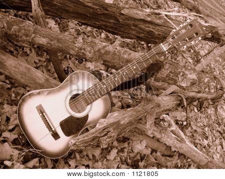 Guitar Ll