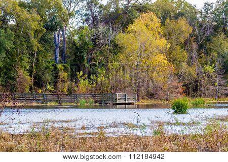 Colorful Creekfield Lake At Brazos Bend Texas