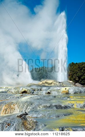 Prince of Wales Feathers, Pohutu and Te Horu geysers