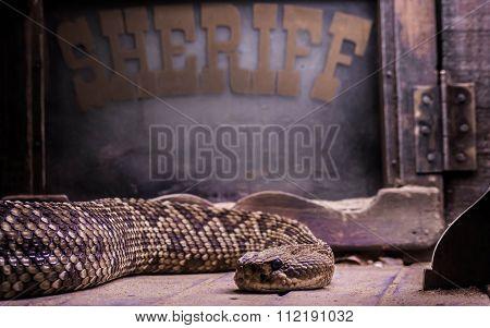 Rattlesnake sheriff