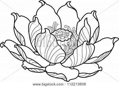 Black silhouette outline lotus. Vector tattoo illustration