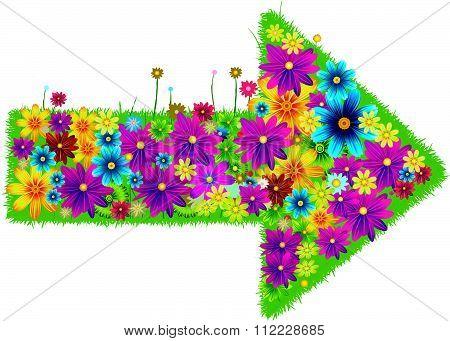 Arrow Made Of Flowers