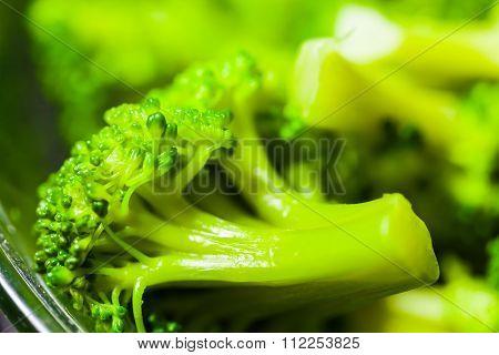 Hot Boiled Broccoli Close-up