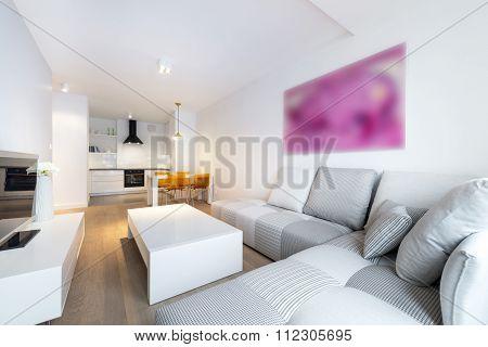 Modern Interior Design Living Room And Kitchen
