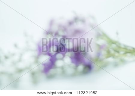 Blur Bokeh Of Violet Flower Bouquet