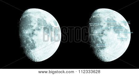 Moon atlas with seas and craters labels - Latin and English names - cool cold tone poster