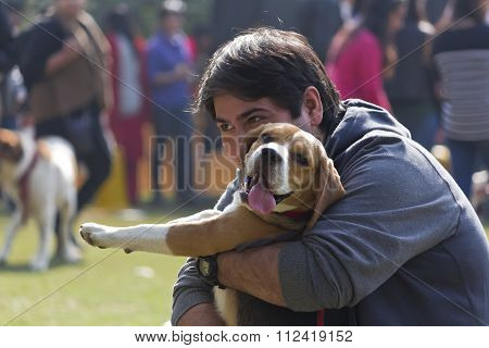 A Beagle Dog With Its Owner