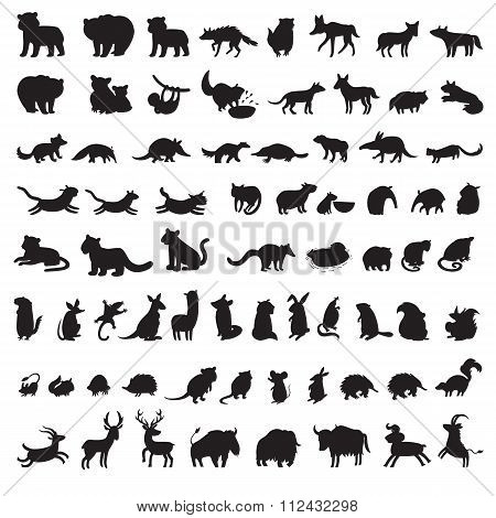 Mammals of the world. Extra big set of animals gray silhouettes.