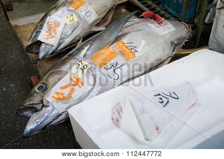 Fresh Tuna Fish Ready To Be Sell