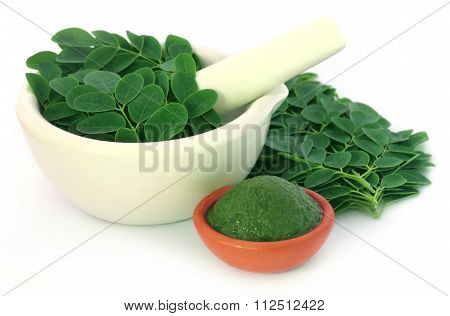 Edible Moringa Leaves With Ground Paste