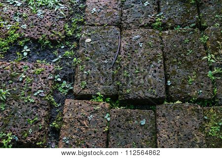 Closeup Of The Weathered Stone Pathway With Small Plant