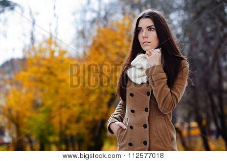Beautiful Elegant Woman. Autumn