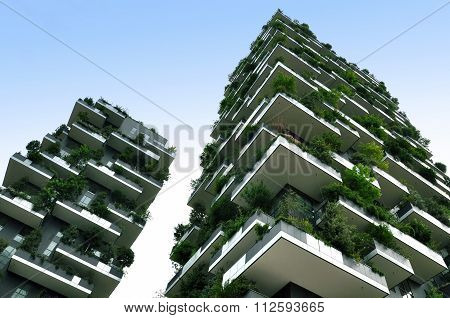 Two skyscraper with growing trees in Milan. Lookup