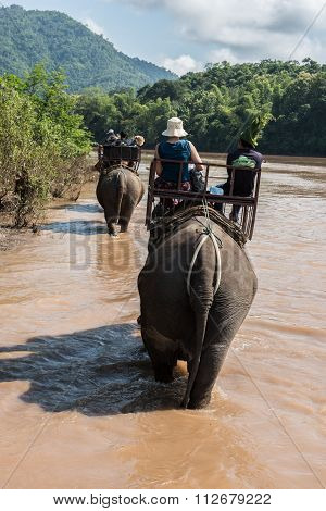 Elephant Ride To Mount Phousi