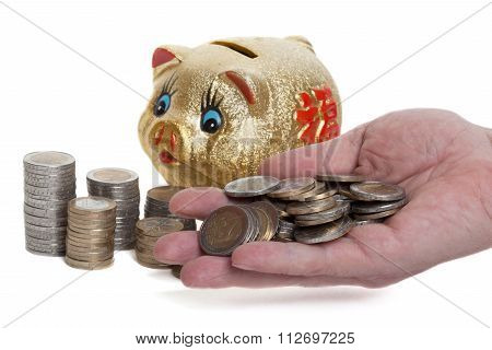 Golden piggy bank with a handful coin in front of white background