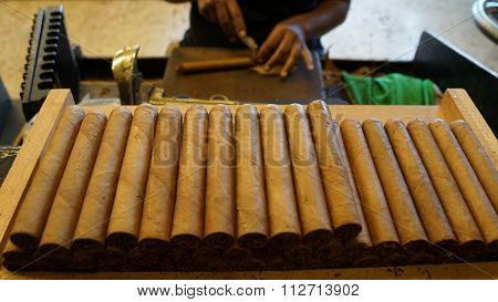 Cigar Factory in La Romana, Dominican Republic