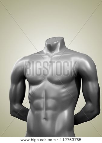 Male Mannequin Nude Torso.