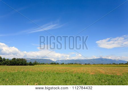 Agriculture, Uncultivated Field