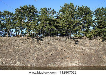 Castle wall of Edo castle in Tokyo, Japan