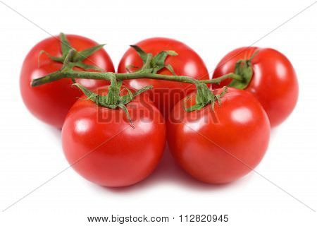 Tomatoes On A Bunch