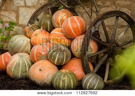 Ripe Orange Pumpkins Stacked