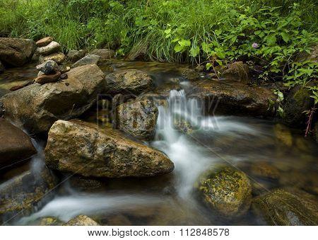 Creek Zen
