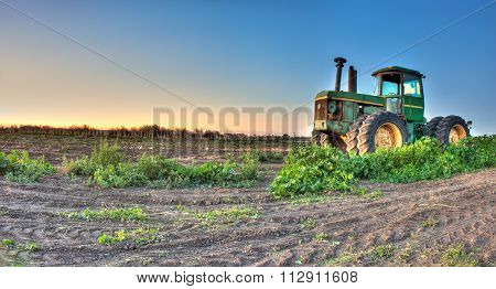 Tractor parked among weeds at sunrise.