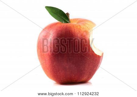 Apple Bitten