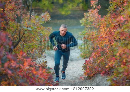 Young Muscular Jogger Runs On The Colorful Red Autumnal Fores