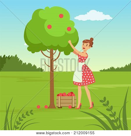 Flat woman character collecting the harvest from the apple tree. Ecological lifestyle concept. Gardening and harvesting. Green nature environment. Ecologically clean world. Vector poster or card