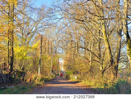 Rural street in the village of Ust Slav on the outskirts of St. Petersburg at autumn Russia.
