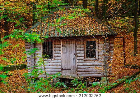 Remoted Old Wooden Shack Of Ranger In Autumn Forest