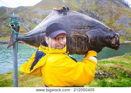 fisherman carries on his shoulder a huge fish. 25 kg halibut.