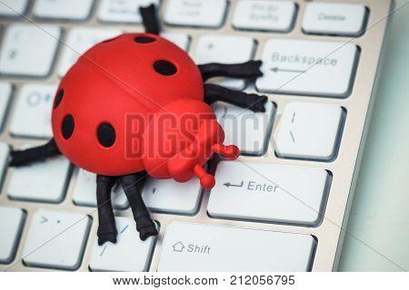 Software bug / A ladybug on computer keyboard
