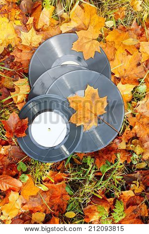 Vintage vinyl records on fall autumn leaves background.