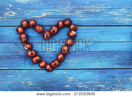 Horse-chestnuts in heart shape on blue aged wooden boards background. Aesculus hippocastanum.