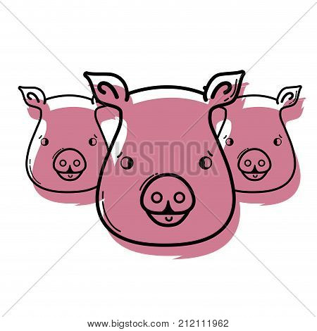color cute pigs heads wilds animals vector illustration