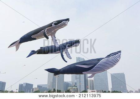 Xiamen International Kite Festival, China