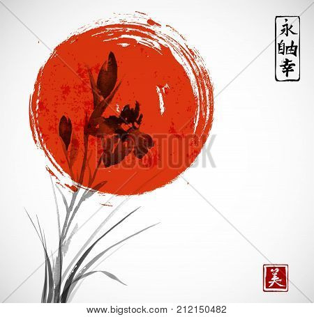 Iris flowers and big red sun hand drawn with ink. Traditional oriental ink painting sumi-e, u-sin, go-hua. Contains hieroglyphs - eternity, freedom, happiness, beauty.
