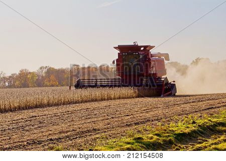 A combine harvesting soy beans in the dust