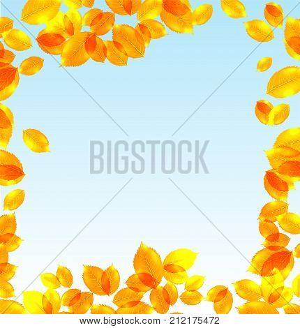Yellow leaves vector fall background with day sky