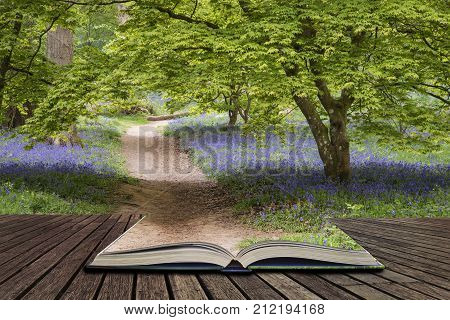 Stunning Vibrant Landscape Image Of Blubell Woods In English Countryside In Spring Concept Coming Ou