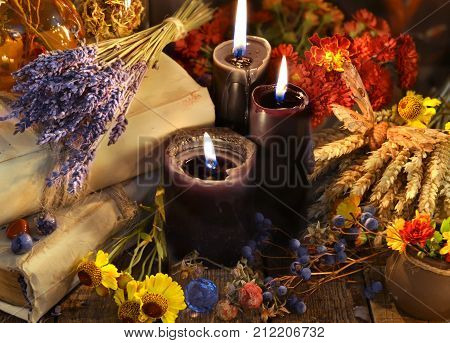 Lavender bunch, healing herbs, flowers, berries and black candles on planks. Occult, esoteric, divination and wicca concept. Alternative medicine and homeopathic vintage background