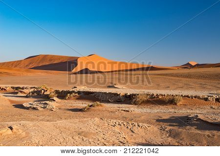Sossusvlei Namibia, Travel Destination In Africa. Sand Dunes And Clay Salt Pan With Acacia Trees, Na