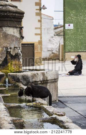Black cat drinking water from a fountain in the foreground and a pilgrim in the background on the Camino Frances