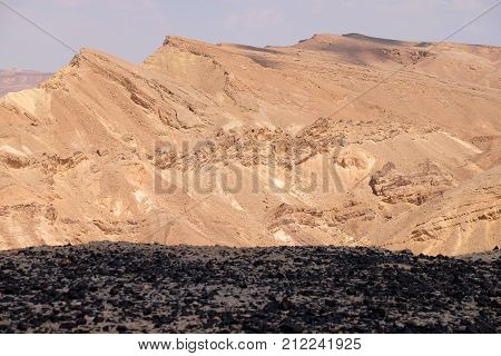 Ground covered obsidian stones in mountains of Negev desert Israel.