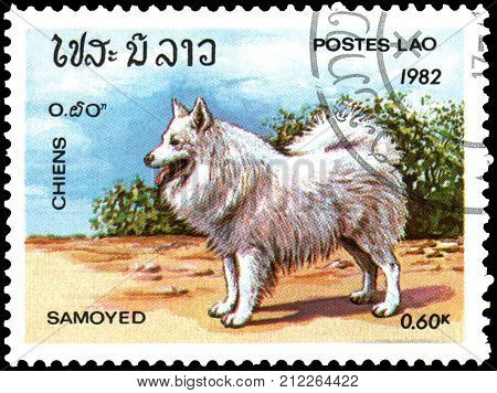 LAOS - CIRCA 1982: a postage stamp, printed in Laos, shows a Samoyed Dog