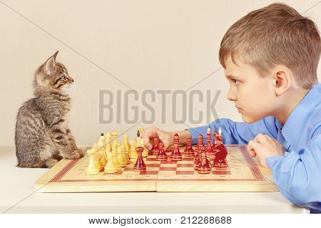 Young grandmaster with a cute kitten plays chess.