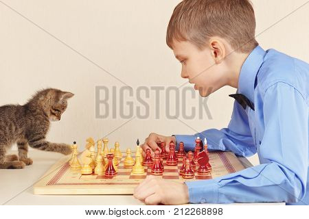 Beginner grandmaster with a striped kitten plays chess.