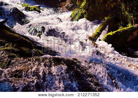 Roaring river over rocky terrain surrounded by a riparian woodland